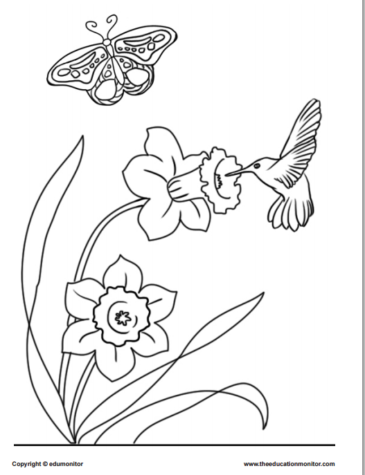 Coloring pages springtime