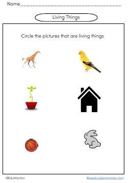 Kindergarten science printables