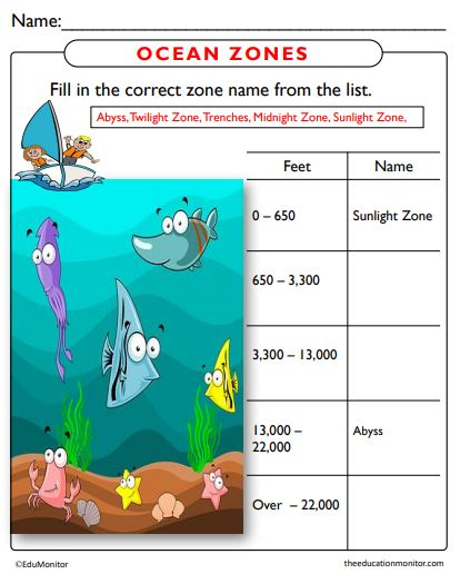 Ocean Zones Science Worksheets